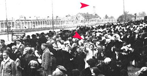 Това не е фалшификат, но пък е интересно щастлива тази госпожа еврейка от снимката с фона на уж непрекъснато димящия комин от пещта в която са горяли евреите.