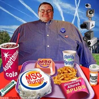 0_david_dees_aspartame_cola_msg_burger_fluoride_springs1