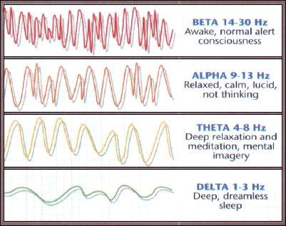 Видове мозъчни вълни