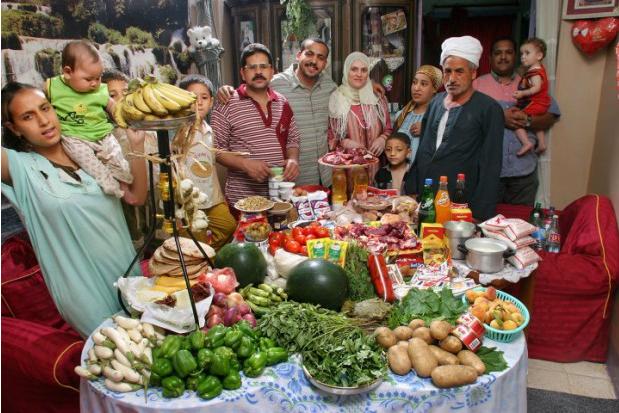 Египет, бюджет  387.85 египетски лири; $68.53
