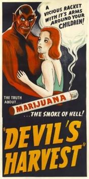 Митът_за_марихуаната_28_03-3
