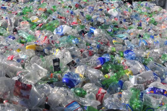 PET-plasticos-contenedores-distribuidos-distintos_ZONIMA20130424_0003_17