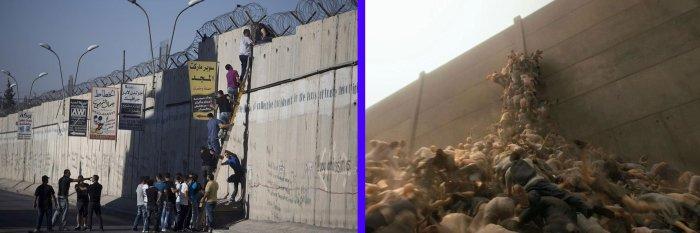 от ляво е снимка с палестинци, а от дясно кадър от филма